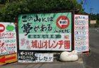 城山オレンヂ園|山のおやじの手作りテーマパークは遊び心満載!!〜大阪府富田林市〜