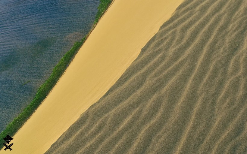 sea greenary and sand dunes forming super interesting frame with colors and patterns