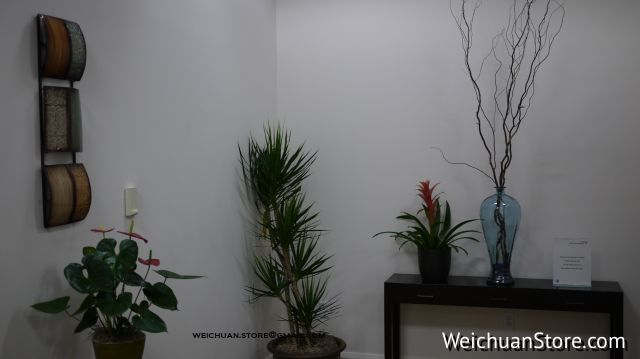 SFO-TERRACES LOUNGE@weichuanstore.com
