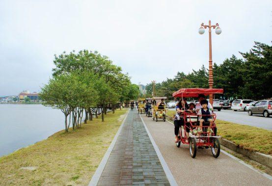 bicycle rental at Gyeongpo Lake