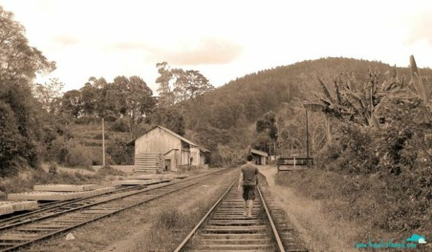 Walking the tracks at Ella Junction