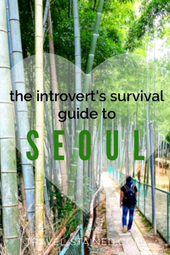 things to do in seoul alone, introvert in seoul