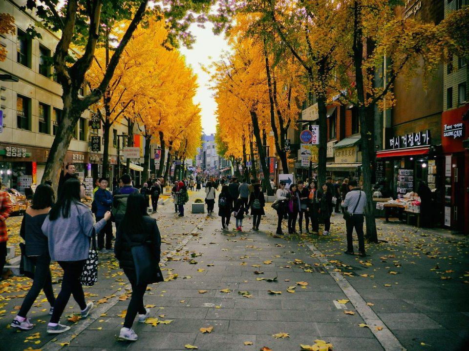 garosugil during autumn in seoul korea