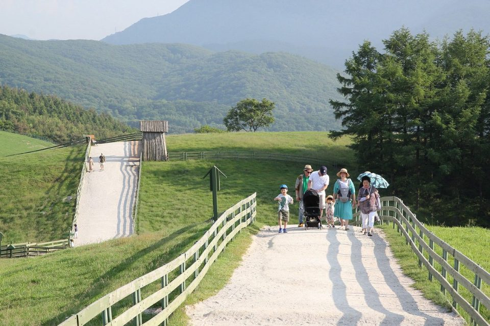 walking course at daegwallyeong sheep farm