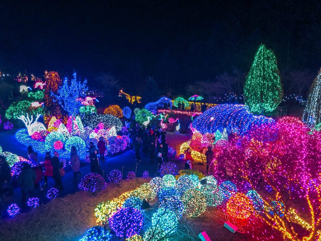 garden of morning calm lighting festival during winter in korea