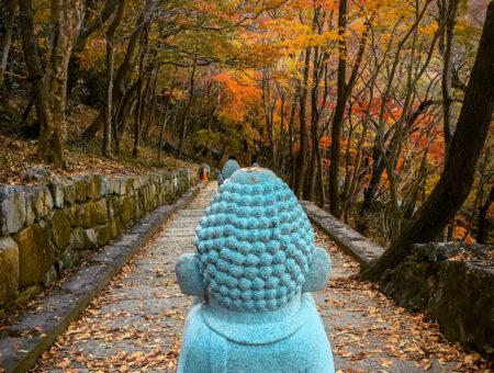 buddha statue on the way to hyangiram hermitage in yeosu
