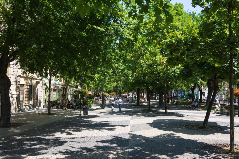 Кафе и рестораны в тени деревьев - аллея Старого города Братиславы