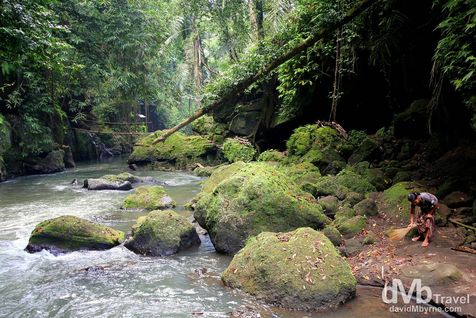 New Latest Quotes Wallpaper Jungle Scenery Near Goa Gajah Elephant Cave On The