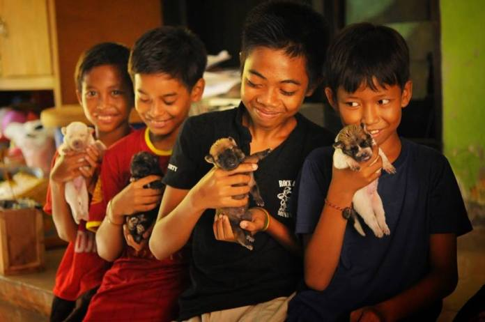 animal conservation projects in Asia