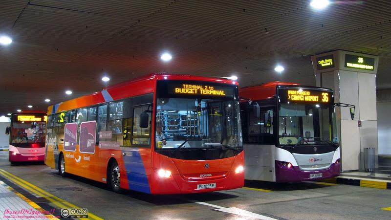 Bus 36 - Changi Airport travel.joogo.sg