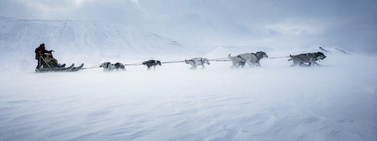 Svalbard 27