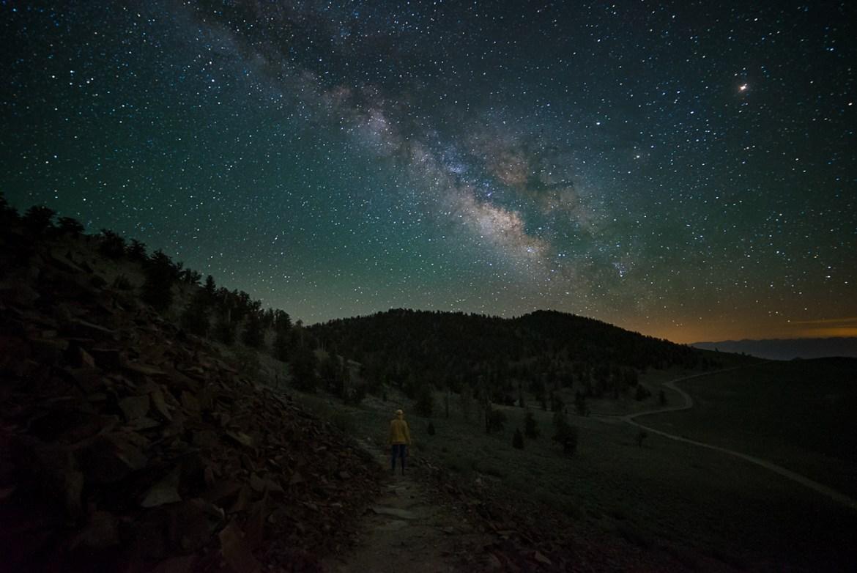 bristlecone-night-2
