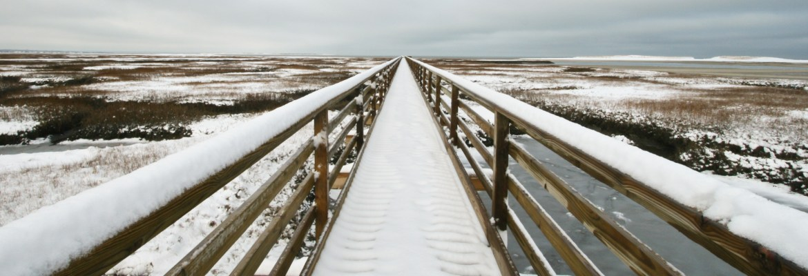After a sudden overnight snowfall in Cape Cod, MA, I got up before the sun to capture fresh snow on a marsh boardwalk in Yarmouth Port.