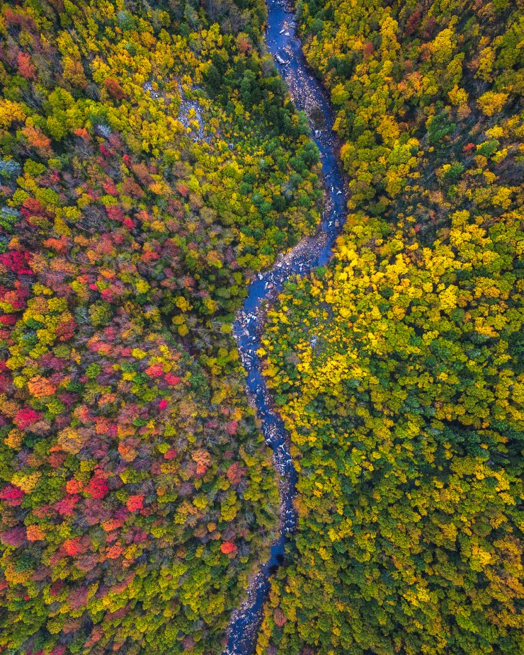 west-virginia-drone-over-fall-colors-by-michael-matti