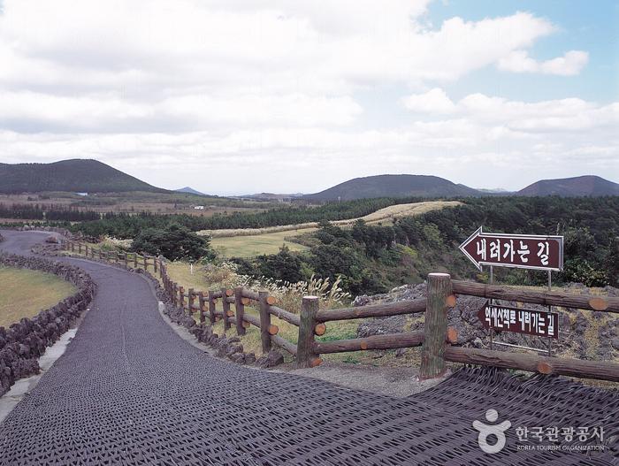 山君不離 산굼부리 - 濟州旅遊 | U Travel 旅遊資訊網站