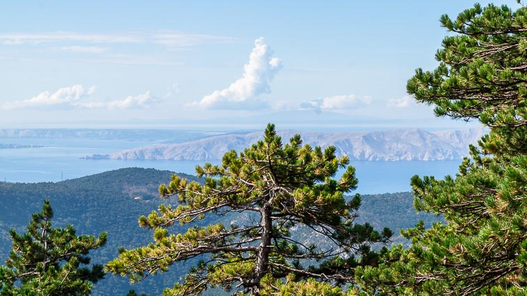 Views on Krk Island