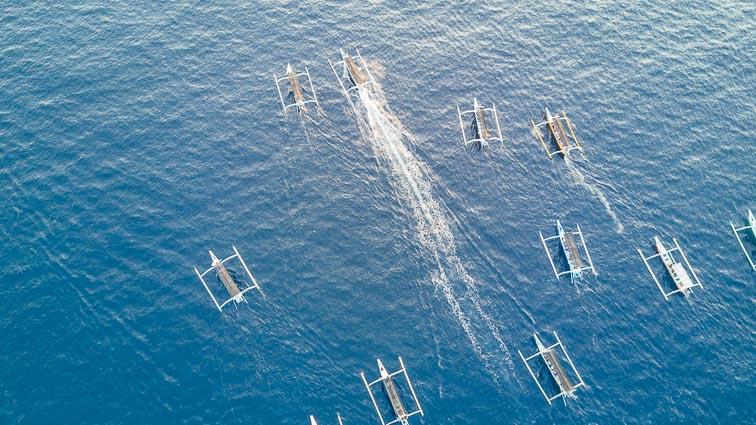 Dozens of boats chase dolphins near Lovina