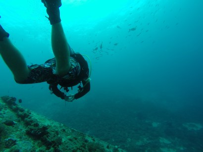 Swimming over the wreck