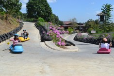 zoocobia-fun-zoo