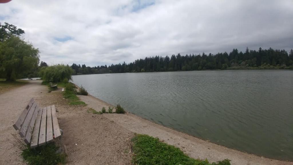 Lost Lagoon, pond, Stanley Park