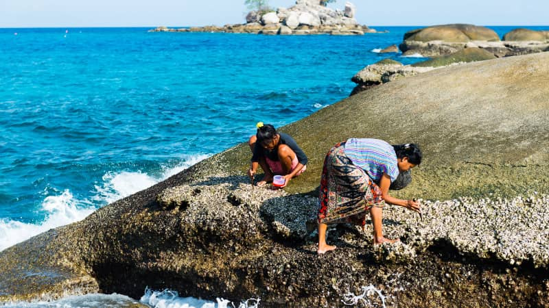 Members of Thailand's Moken ethnicity collect oysters on a small island in Thailand's Mu Ko Surin National Park.