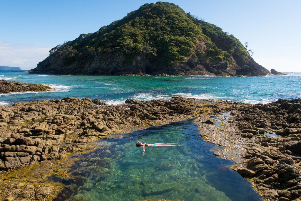 Great Barrier Island in New Zealand Travel Guide