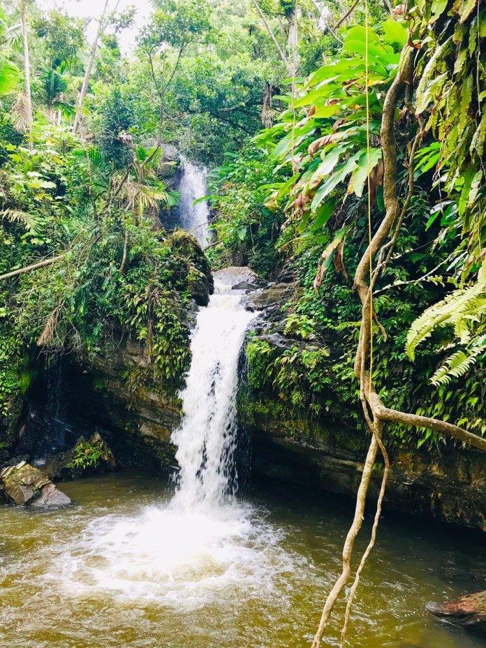 Juan Diego Falls Puerto Rico Rainforest