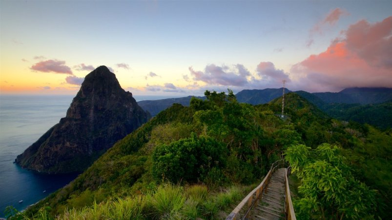 Tet Paul Nature Trail Things to do in St Lucia