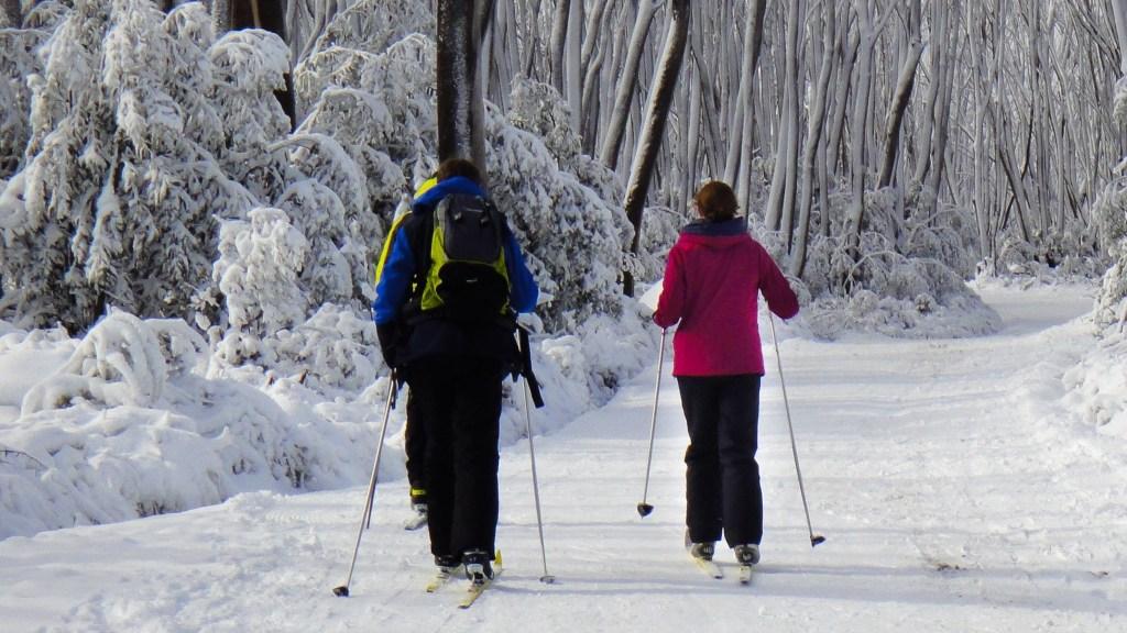 Lake Mountain ski