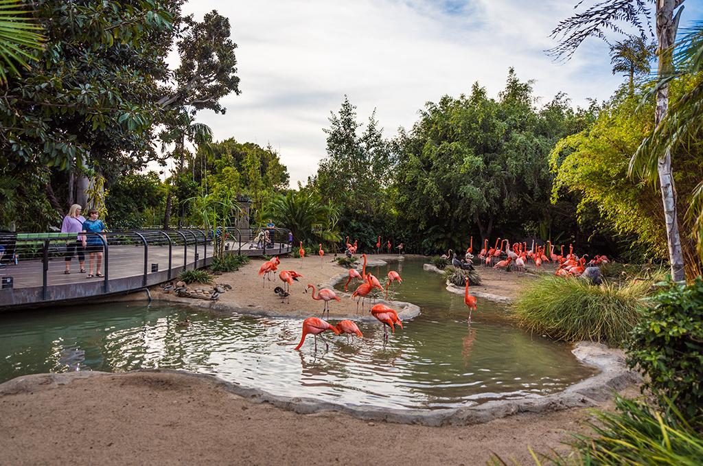 San Diego Zoo in San Diego, California