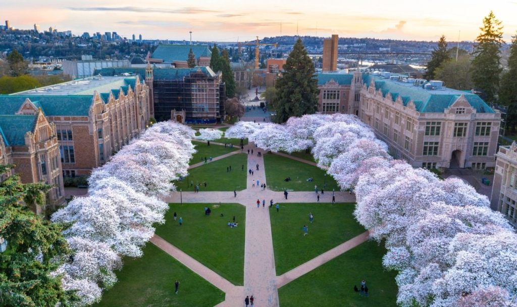 Sightseeing in Washington University Best Things to do in Seattle