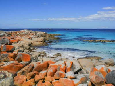 Tasmania Australia: The Ultimate Travel Guide to Tasmania
