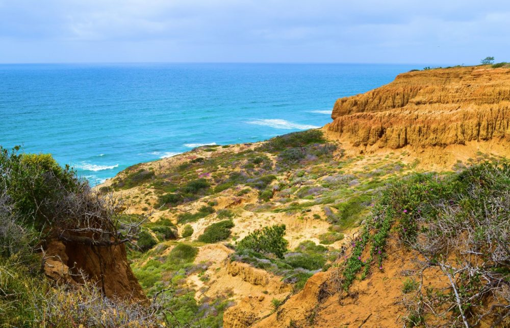 Visit Torrey Pines State Natural Reserve, San Diego, California