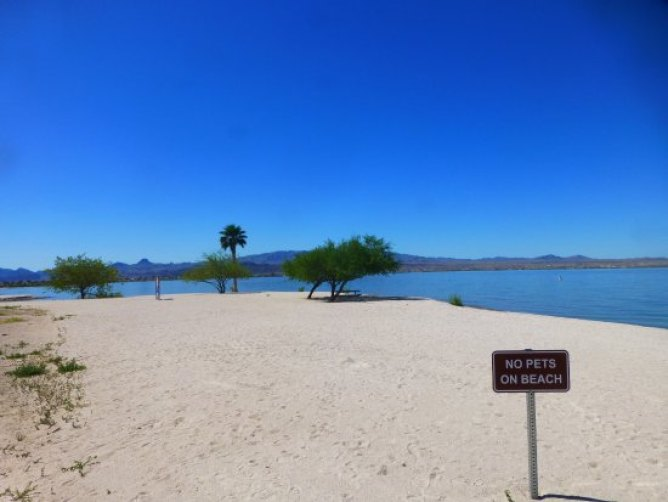 Lake Havasu State Park Beach in Arizona
