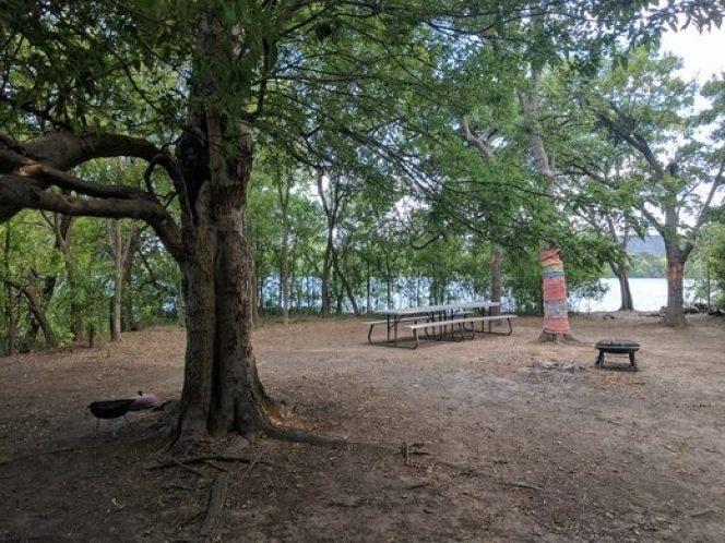 Visit Snake Island in Austin Texas