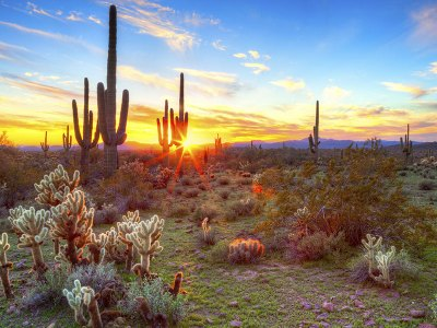 50 Best Things to Do in Scottsdale, Arizona