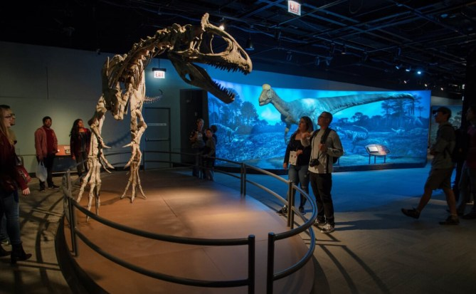Things To Do In Charlotte NC Discovery Place