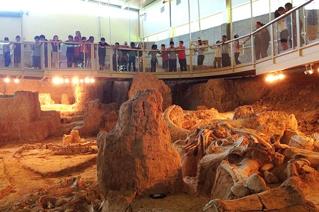 Waco Mammoth National Monument