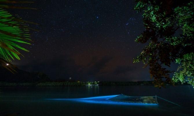 Bioluminescent Beaches in the Maldives