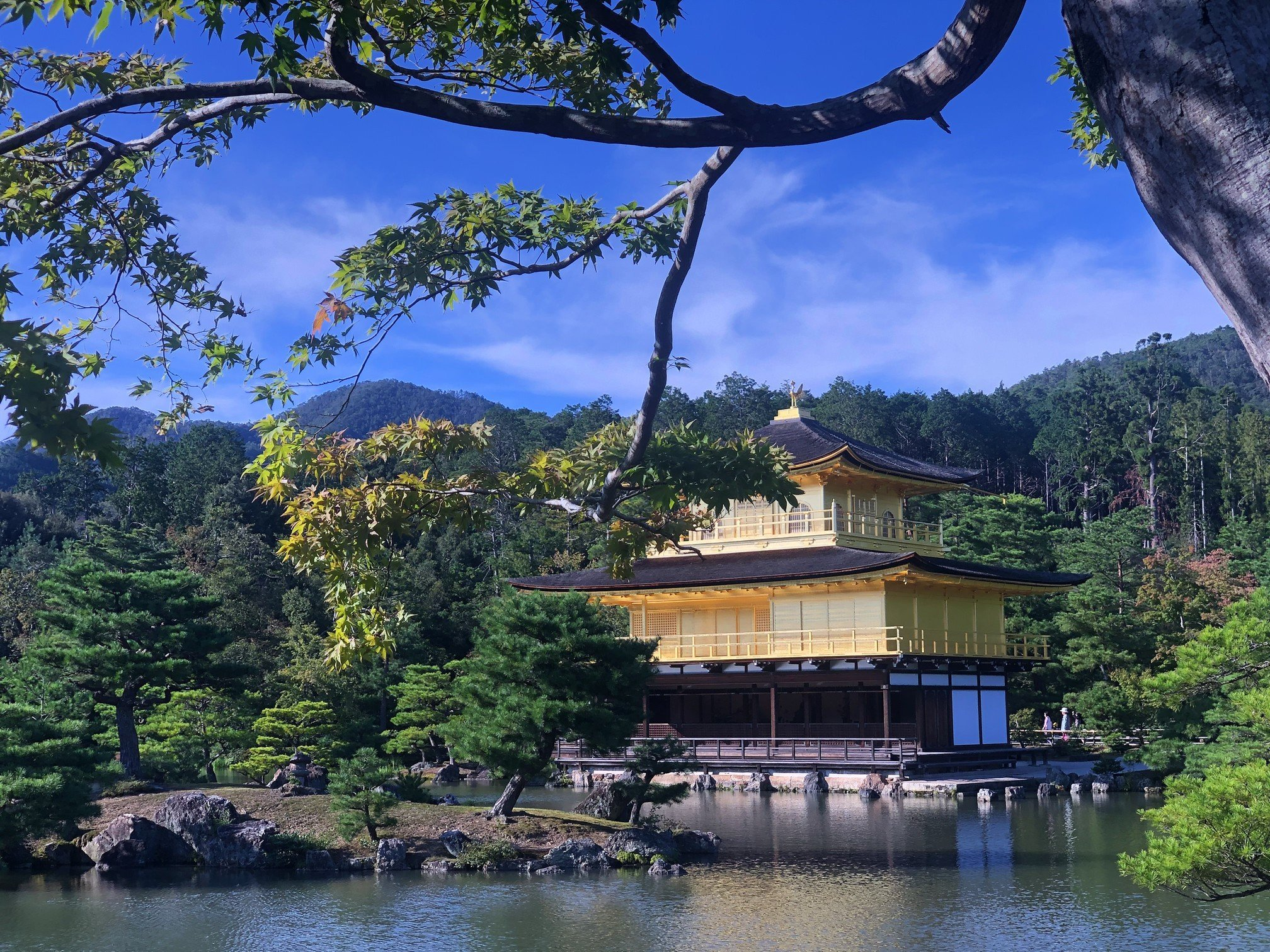 Top 5 places you have to visit in Kyoto
