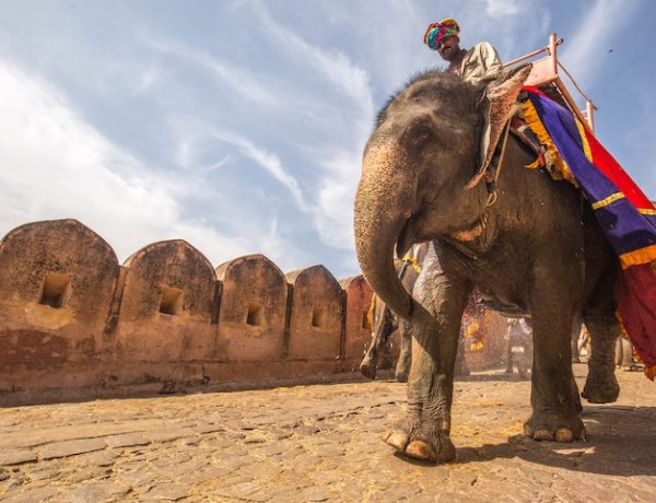 Ultimate guide Travel To India