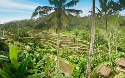 Individuele rondreis op Java en Bali in 24 dagen