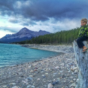 Zevin atop deadwood at Lake Abraham