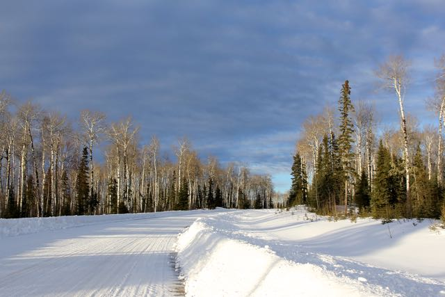 Snowy winter road in Waskesiu Saskatchewan
