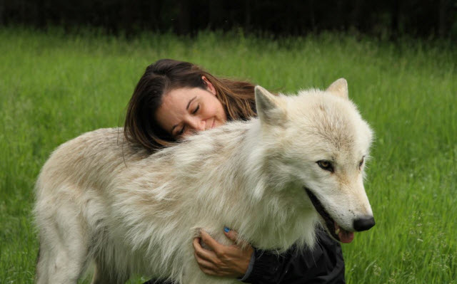 Jenn and her wolf John from Adventuraid
