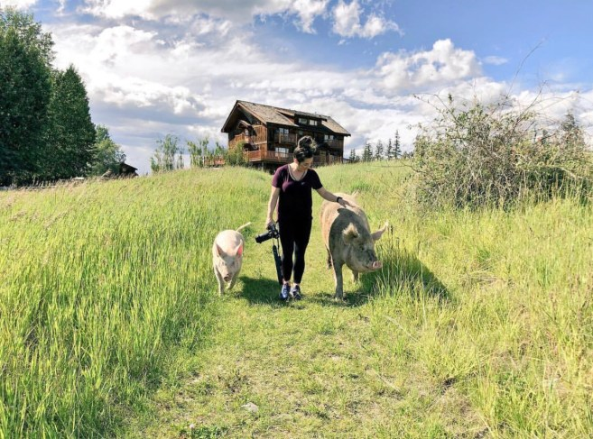 Walking with Babe and Lucky, Echo Valley Ranch and Spa, B.C. Jenn Smith Nelson