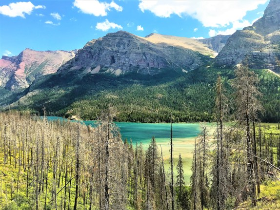 On trail to Virginia Falls @ Glacier National Park. Hiking with Kids, Hiking with family. Glacier National Park Montana