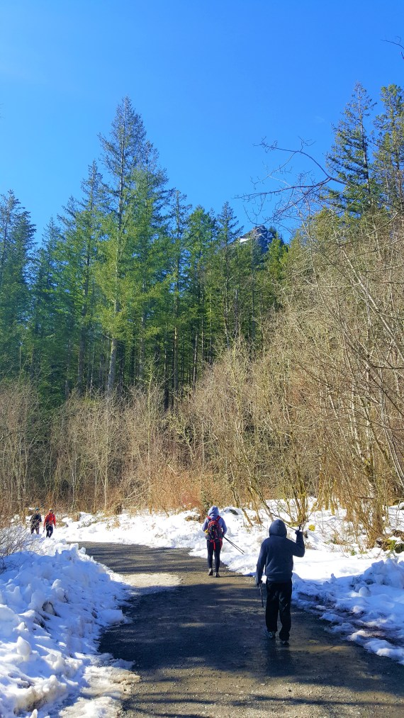 From Parking Lot to Rattlesnake Trail head.  Snow Hiking to Rattlesnake Ledge