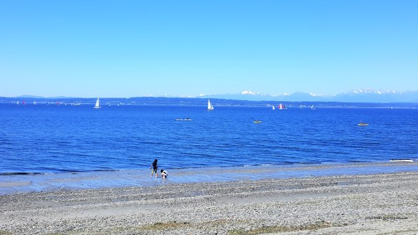 Golden Gardens Beach on Sunny day, Must Visit places at Seattle
