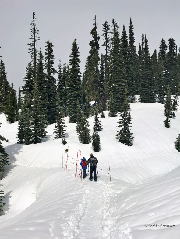 Snow shoeing On Nisqually Vista loop trail in Spring at Mount Rainier